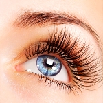 """Eye Envy"" Lash Extensions by Makeup Artistry by Tish"